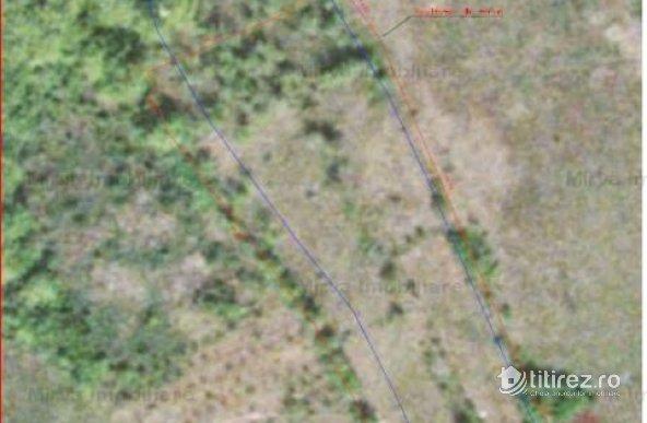 Vanzare teren intravilan/extravilan in Valea Mantei