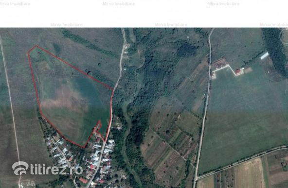 Vanzare 7 ha teren: 3,5 ha intravailan si 3,5 ha extravilan, in Pleasa