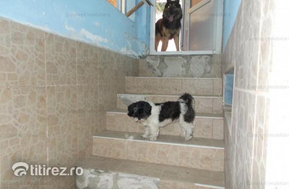 Vila deosebita in Clinceni zona Olteni