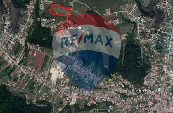 Teren intravilan de vanzare in Bascov, Glamboc deal