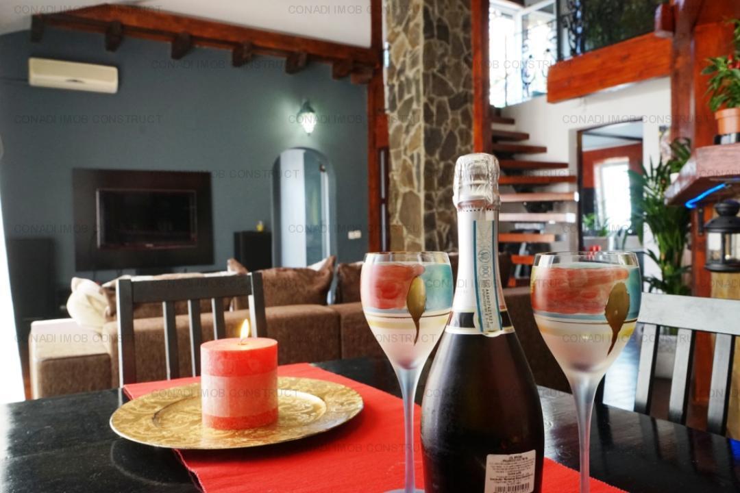 Calea Floreasca, apartament deosebit in vila