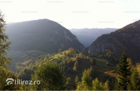 GM1036 Vanzare teren 8000mp, Moeciu-Piatra Craiului, cota 1200