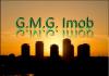 Madalina  - G.M.G.IMOB - Agent imobiliar