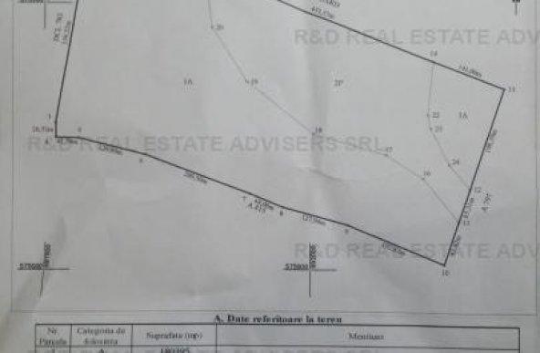 Vaslui,comuna Ivanesti 20 ha  teren arabil,comasat, acte la zi