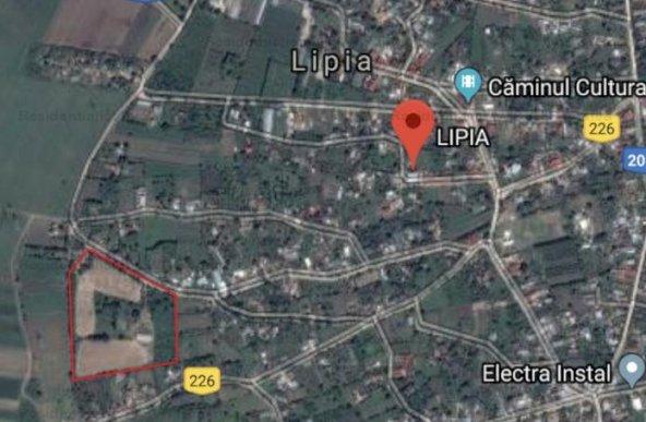 Vanzare teren constructii 38000mp, Lipia, Lipia