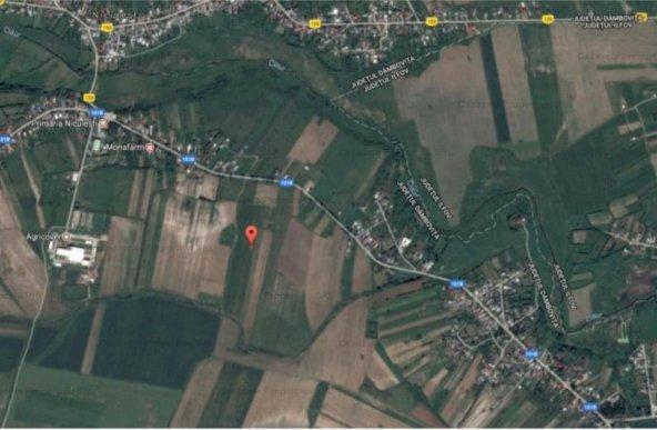 Teren intravilan 9589 mp in loc Niculesti, Dambovita