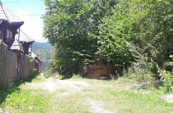 Padure in Baile Tusnad 10.000 mp intravilan