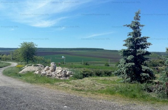 SPATIU INDUSTRIAL, Manoleasa, Botosani