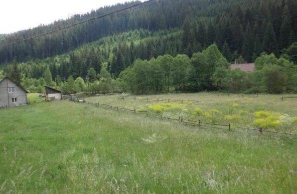 Teren  3.503 m.p Valea Putnei, Pojorata