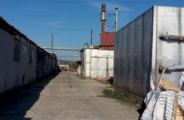 Cladiri industriale/ edilitare/ administrative/ anexe si teren, Leontinesti, Bacau