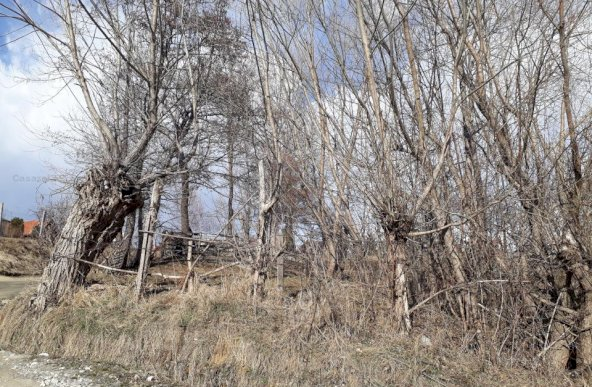 3 loturi de teren in suprafata totala de 1726 mp, situate in Predelut,Str. Nicolae Malaxa,jud.Brasov