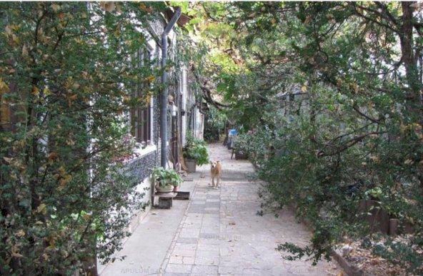 Teren Ion Mihalache-Parcul Copilului