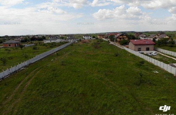 Vanzare Teren Constructii ,zona Domnesti Sarbi ,strada Ciutaci ,nr Ciocarliei ,635.500 €
