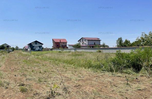 Domnesti, Ciutaci, Drumul Targului,  teren in suprafata de 1000mp.
