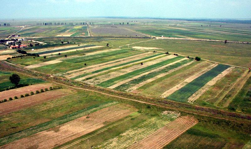Guvernul amana decizia privind retrocedarile terenurilor agricole si forestiere